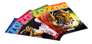 Flyers for the Adelaide Zoo - click to enlarge